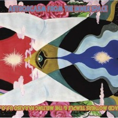 Astrorgasm From The Inner Space mp3 Album by Acid Mothers Temple & The Melting Paraiso U.F.O.