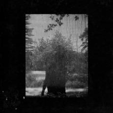 Ruins mp3 Album by Grouper
