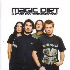 What Are Rock Stars Doing Today mp3 Album by Magic Dirt