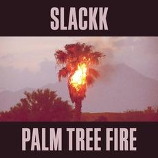 Palm Tree Fire mp3 Album by Slackk