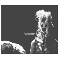 All Of Them Witches mp3 Album by Hedvig Mollestad Trio