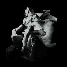 Punish, Honey mp3 Album by Vessel
