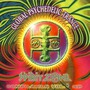 Global Psychedelic Trance, Volume 5