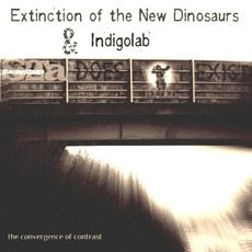 The Convergence Of Contrast EP mp3 Album by Indigolab & Extinction Of The New Dinosaurs