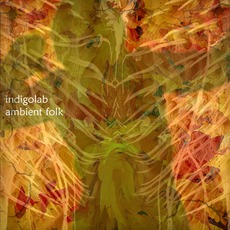 Ambient Folk mp3 Album by Indigolab