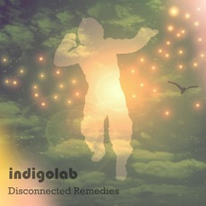 Disconnected Remedies mp3 Album by Indigolab