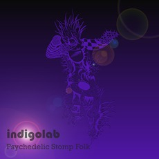 Psychedelic Stomp Folk mp3 Album by Indigolab