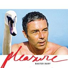 It's A Pleasure mp3 Album by Baxter Dury