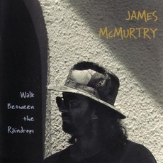 Walk Between The Raindrops mp3 Album by James McMurtry