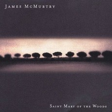 Saint Mary Of The Woods mp3 Album by James McMurtry