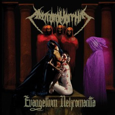 Evangelivm Nekromantia mp3 Album by Antropomorphia