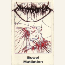 Bowel Mutilation mp3 Album by Antropomorphia