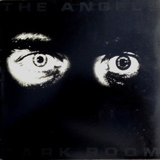 Dark Room mp3 Album by The Angels