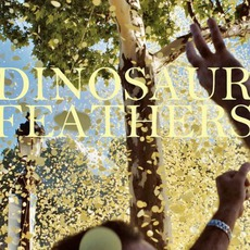Whistle Tips mp3 Album by Dinosaur Feathers