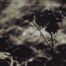 Seven Sorrows mp3 Album by Desiderii Marginis