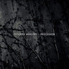 Procession mp3 Album by Desiderii Marginis