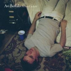 At Best Cuckold mp3 Album by Avi Buffalo
