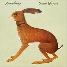 Lookaftering mp3 Album by Vashti Bunyan
