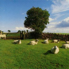 Chill Out mp3 Album by The KLF
