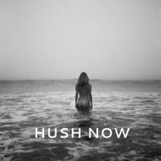 Hush Now mp3 Album by Sunny Levine