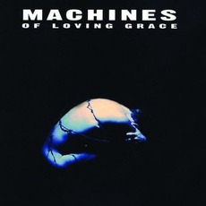 Concentration mp3 Album by Machines Of Loving Grace