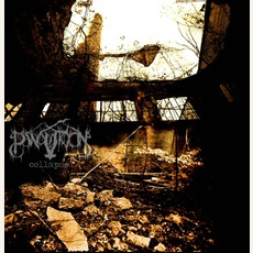 Collapse mp3 Album by Panopticon