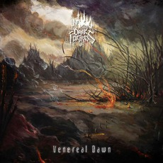 Venereal Dawn mp3 Album by Dark Fortress