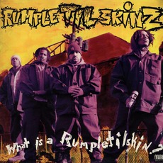 What Is A Rumpletilskin? mp3 Album by Rumpletilskinz