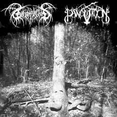 Panopticon / Lake Of Blood mp3 Compilation by Various Artists