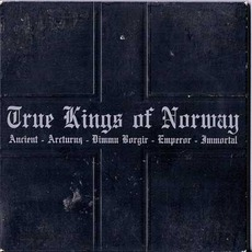 True Kings Of Norway mp3 Compilation by Various Artists