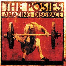 Amazing Disgrace mp3 Album by The Posies