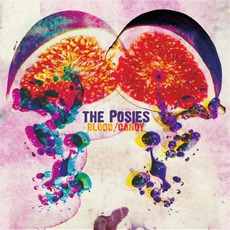 Blood/Candy (Deluxe Edition) mp3 Album by The Posies