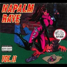 Napalm Rave, Volume 2 by Various Artists