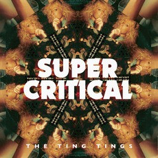 Super Critical by The Ting Tings