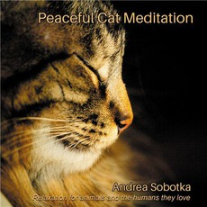 Peaceful Cat Meditation mp3 Album by Andrea Sobotka
