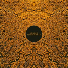 Flashlight EP mp3 Album by Bonobo