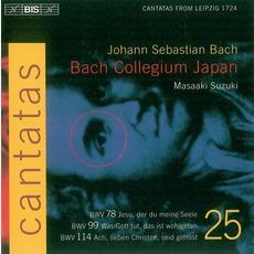 Cantatas, Volume 25 mp3 Artist Compilation by Johann Sebastian Bach
