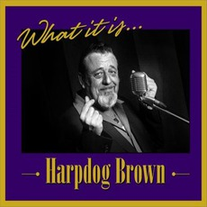 What It Is... mp3 Album by Harpdog Brown