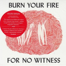 Burn Your Fire For No Witness (Deluxe Edition) mp3 Album by Angel Olsen