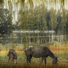 Old Pride mp3 Album by Pianos Become The Teeth