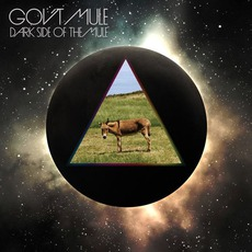 Dark Side Of The Mule (Deluxe Edition) mp3 Album by Gov't Mule