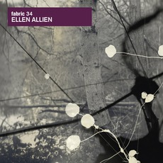 Fabric 34: Ellen Allien mp3 Compilation by Various Artists
