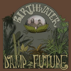 Damp Future mp3 Album by Birthwater