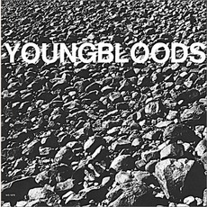 Rock Festival mp3 Live by The Youngbloods