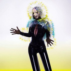 Vulnicura mp3 Album by Björk