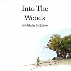 Into The Woods mp3 Album by Malcolm Middleton