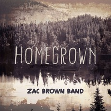 Homegrown mp3 Single by Zac Brown Band