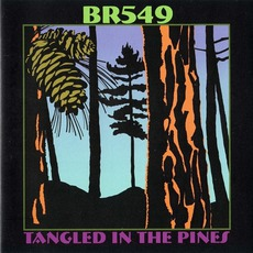 Tangled In The Pines mp3 Album by BR5-49