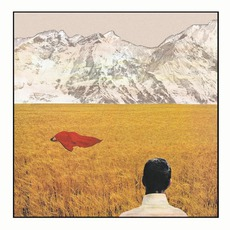 After mp3 Album by Lady Lamb The Beekeeper