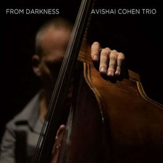 From Darkness mp3 Album by Avishai Cohen Trio